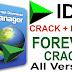 IDM Internet Download Manager 6.33 Build 2 Serial Keys Free Download