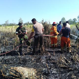 Luar Biasa, Sinergitas TNI Polri Padamkan Sijago Merah di Kebun BPTHMT Sumbawa