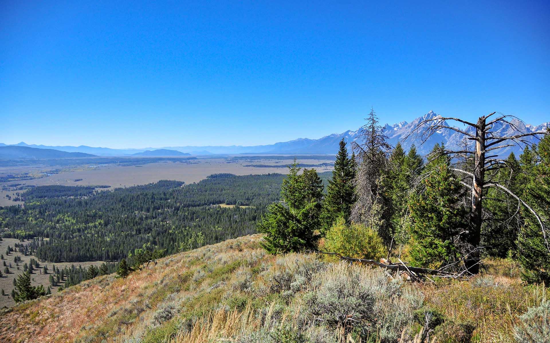 Сигнальная гора парка Гранд-Титон
