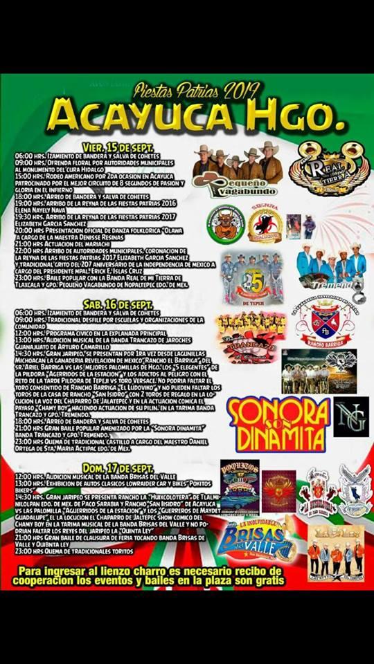 fiestas patrias acayuca 2017