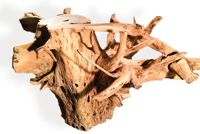 Tree Root Table Bases Phases Africa African Decor