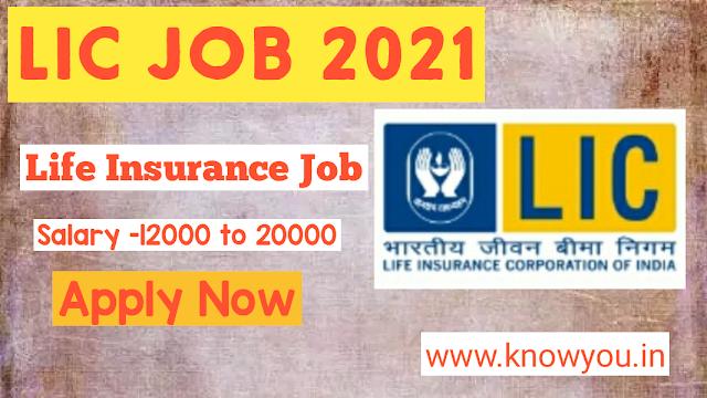 LIC Insurance Representative Recruitment 2021, Latest LIC Job, LIC Job, Life Insurance Job 2021