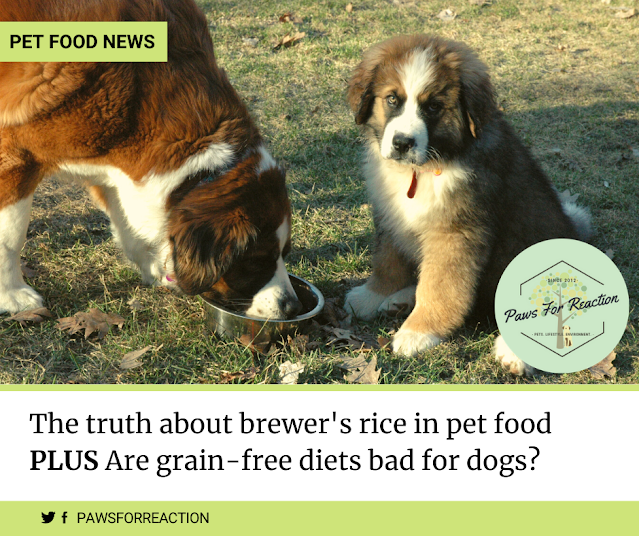 The truth about brewer's rice in pet food
