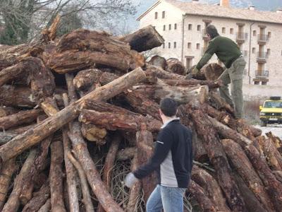 Sant Antoni 2009 fotos de Lluis Belsa 12