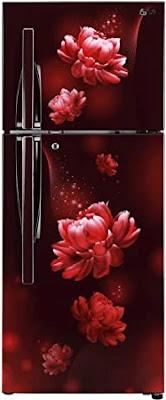 LG 260 L Double Door Inverter Refrigerator (GL-T292RSPN)