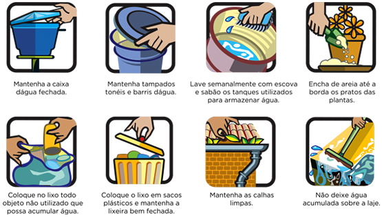 dicas para combater mosquito-da-dengue e focos de larvas