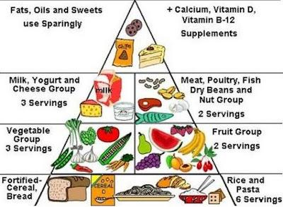 Zat Makanan dan Fungsinya