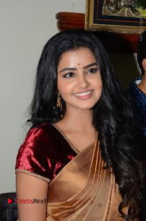 Actress Anupama Parameswaran Stills in Silk Saree with Shatamanam Bhavati Team at Sandhya Theater  0034.JPG