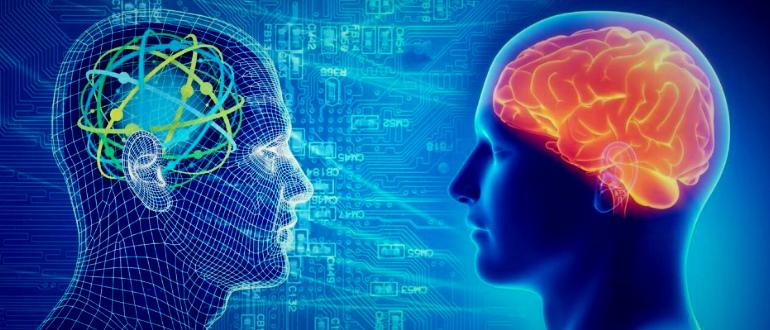 видим то, что хотим увидеть, мозг и реальность