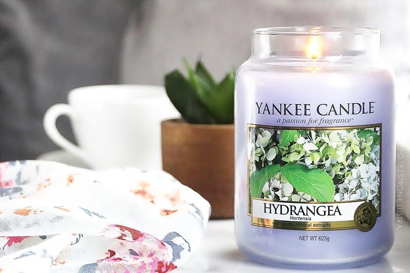 limitowany zapach hydrangea yankee candle