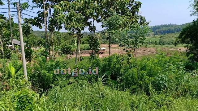 Mencari Tanah Harga Murah di Jakarta? Cek di Sini Saja!