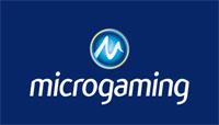 Provider Slot Microgaming
