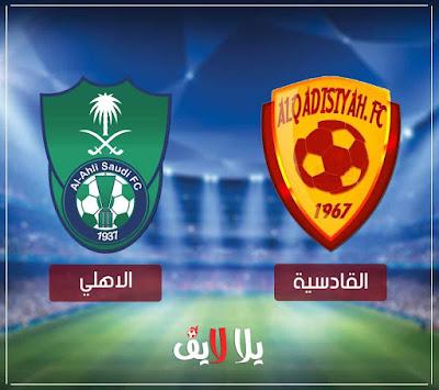 مشاهدة مباراة الاهلي والقادسية بث مباشر اليوم في الدوري السعودي