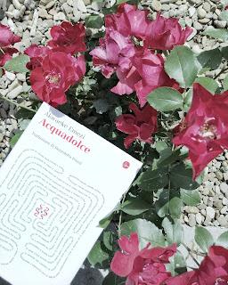 Acquadolce - Akwaeke Emezi Recensione no-spoiler Felice con un libro