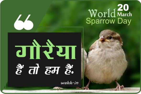 Best World Sparrow Day Quotes  In Hindi