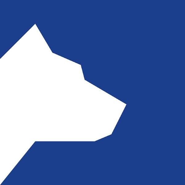 Recrutamento de Estagiário para a Área de Danos Corporais - Direção de Sinistros