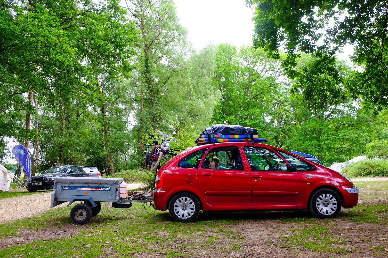 Camping at Hollands Wood Campsite New Forest
