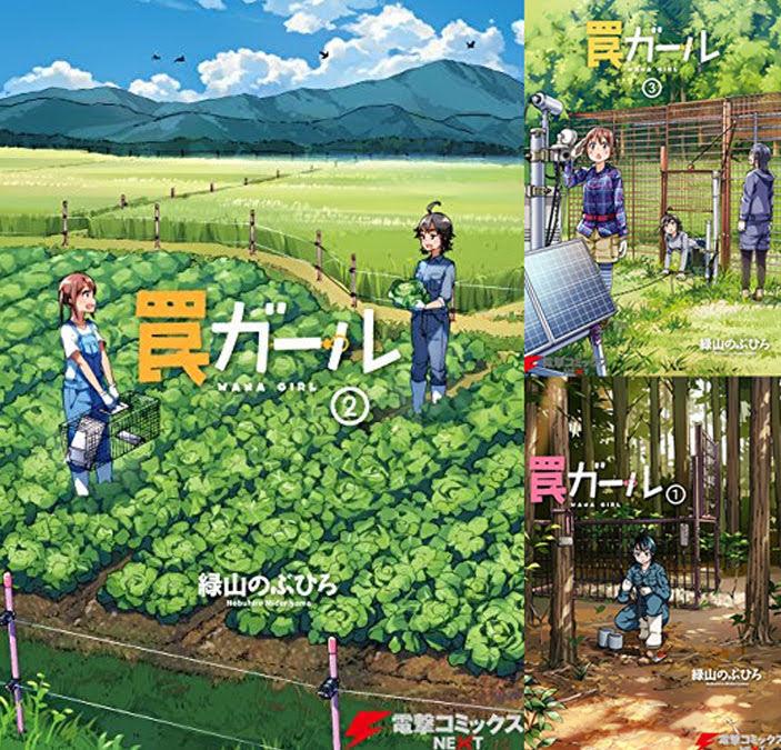 まとめ買い:罠ガール (全4巻)(電撃コミックスNEXT)