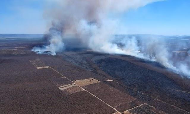 Depois de 12 dias, bombeiros conseguem controlar incêndio na zona rural de Ibotirama