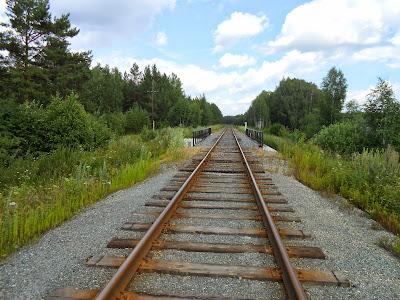 Ветка железной дороги