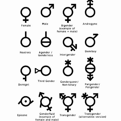 ID: symbols for various genders are visible against a white background.  Gender symbols visible from top left to bottom right are: female, male, bigender (example of female + male), androgyne, neutrois, agender/genderless, intergender, demiboy, demigirl, third gender, genderqueer/non-binary, pangender/poligender, epicene, genderfluid (example of female and male), transgender, transgender (alternative version).