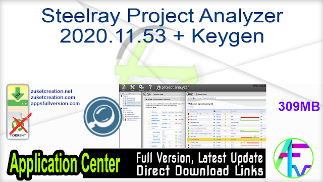 Steelray Project Analyzer 2020.11.53 + Keygen