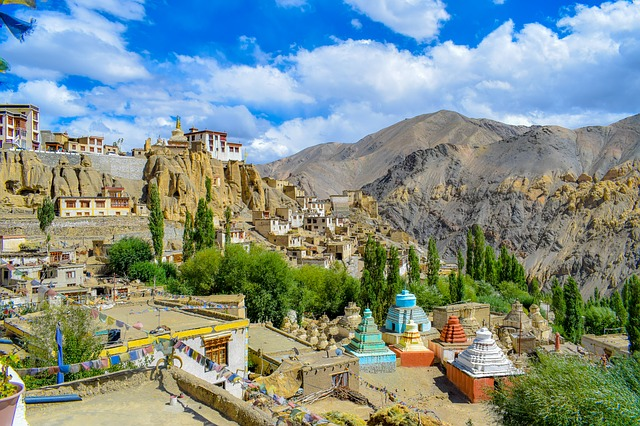 Agricultural and Nature in Ladakh