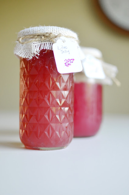 Lilac Jam Lilac Jelly Recipe A Nest for All Seasons