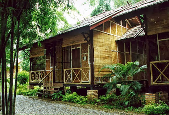 Modern Bamboo House in Philippines  AyanaHouse