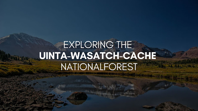 Exploring the Uinta-Wasatch-Cache National Forest
