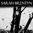 ON THE EDGE OF A RAINDROP by Sarah Brentyn @SarahBrentyn