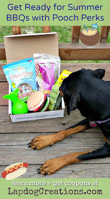 pooch perks dog subscription box BBQ