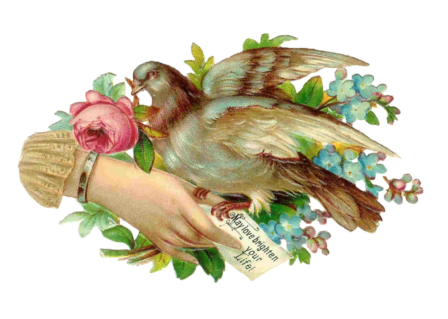 clipart flowers and birds - photo #20