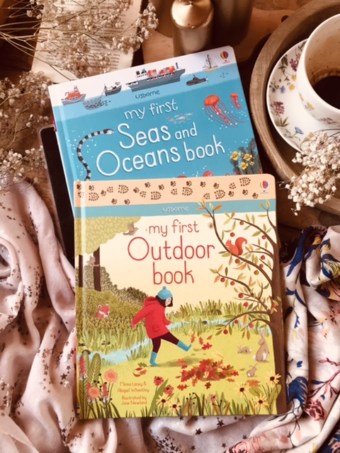 My first - Seas And oceans book // outdoor book