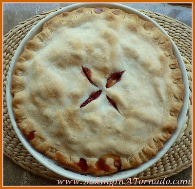 Fruit Lovers' Pie | recipe developed by www.BakingInATornado.com | #recipe #dessert