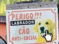 https://www.calangodocerrado.net/2019/11/imagens-wtf-314.html