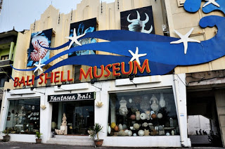 All About Bali Shell Museum