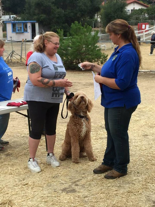 """Henson Earns his """"Service Dog in Training"""" Vest"""