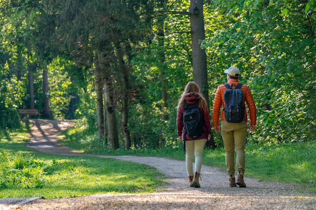 Premiumwanderweg DonAUwald | Etappe 3 von Gundelfingen nach Dillingen 08