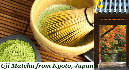 Premium Matcha green tea powder from Uji Kyoto Japan Bulk Ceremonial Culinary lattes weight loss