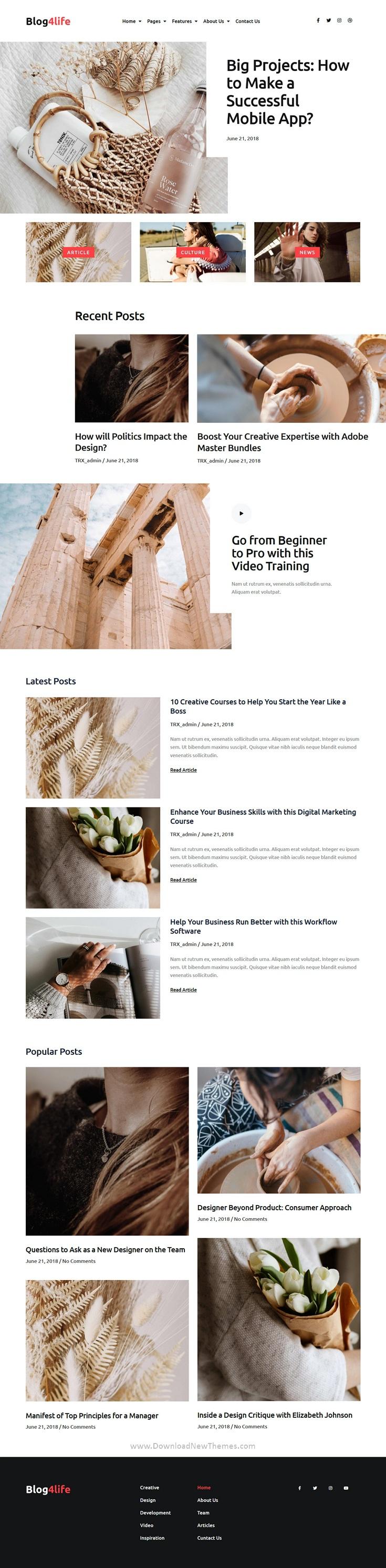 Blog & Magazine Elementor Template Kit