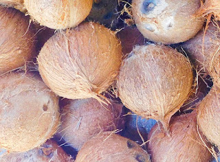 coconut oil, coconuts, #payabay, #payabayresort, organic food, organic, magic of paya