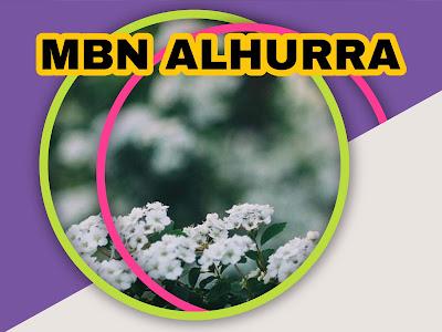 Fréquence  MBN Alhurra HD sur Nilesat