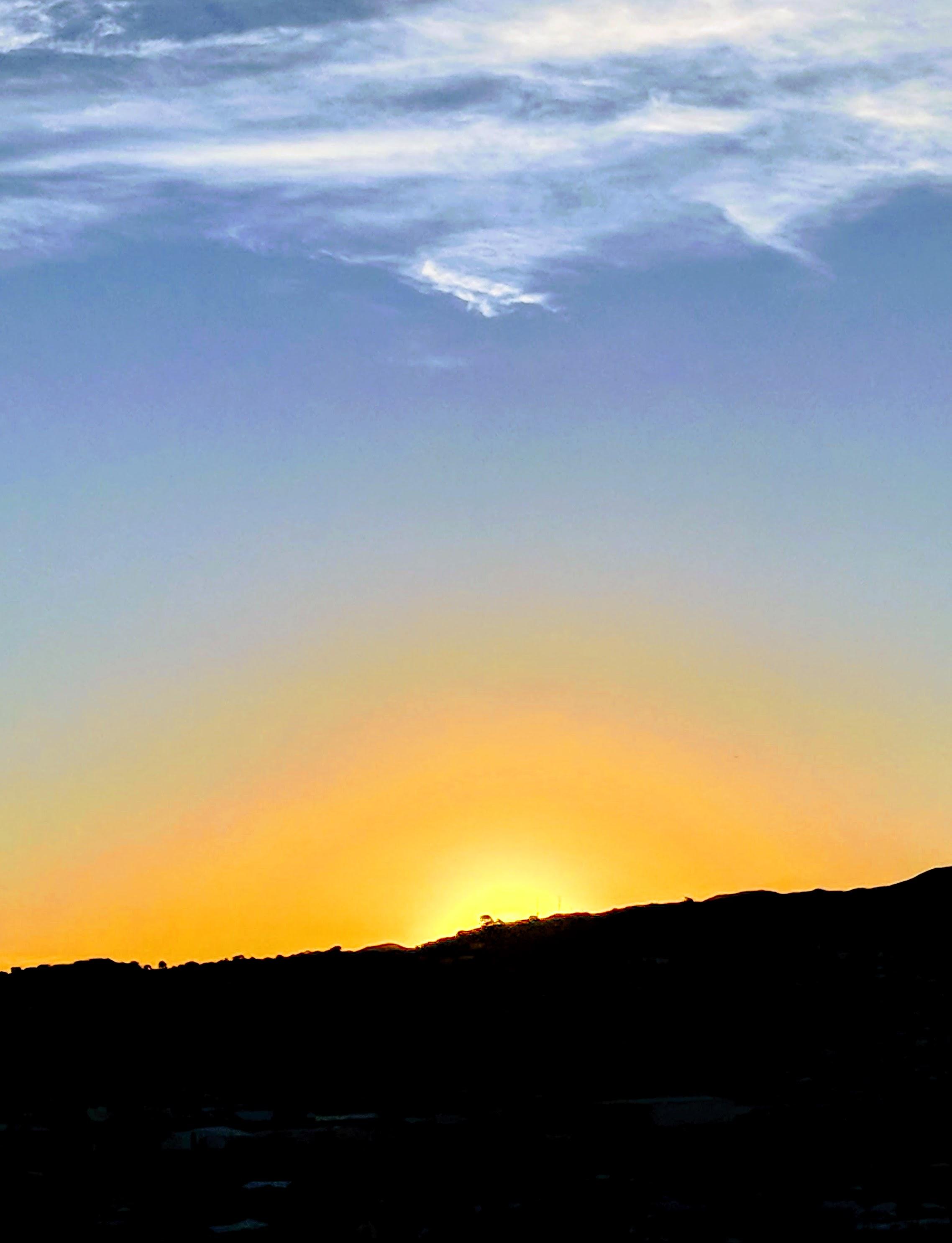 Wellington summer sunset