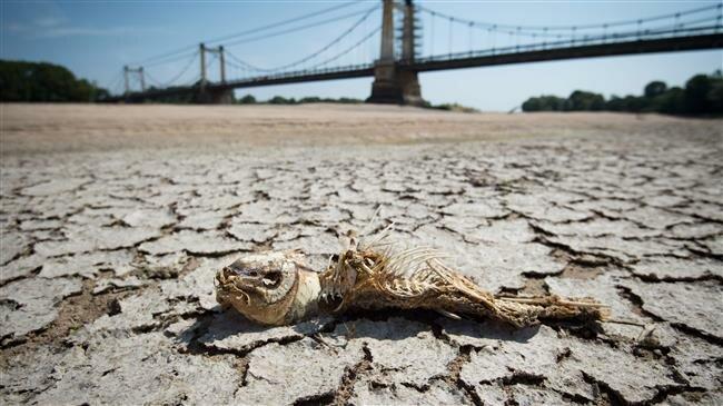 Globalne ocieplenie susza