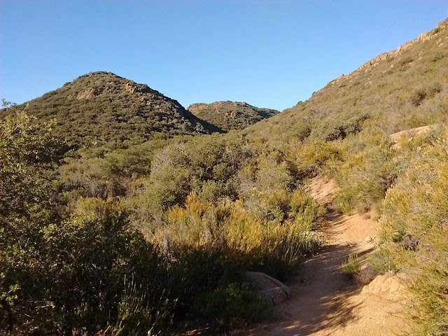Pacific Crest Trail on Kitchen Creek