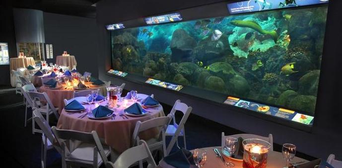 Texas State Aquarium Wedding Venue