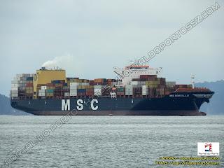 MSC Domitille