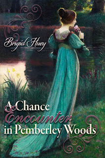Book cover: A Chance Encounter in Pemberley Woods by Brigid Huey