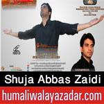http://www.humaliwalayazadar.com/2014/10/shuja-abbas-zaidi-nohay-2005-to-2015.html